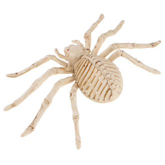 Decoration SPIDER SKELETON