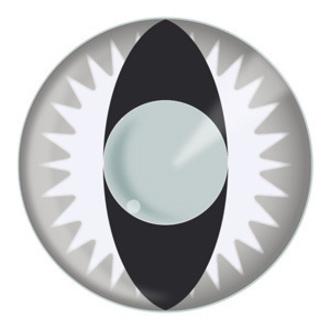 contact lenses GREY DRAGON - EDIT, EDIT