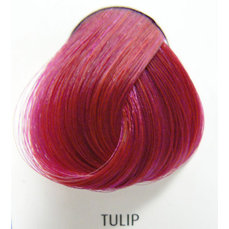 color to hair DIRECTIONS - Tulip