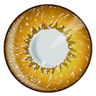 contact lenses Hazel 3 Tone - EDIT, EDIT