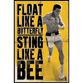 poster Muhammad Ali - Float Like A Butterfly - PYRAMID POSTERS - PP31685