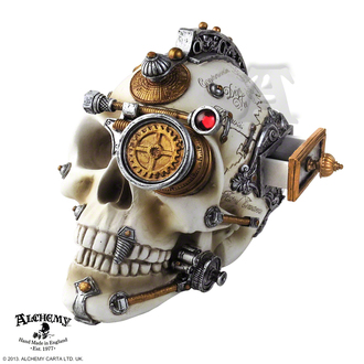 decoration Alchemy Gothic - Erasmus Darwin's Steam-Cerebrum Skull - V4