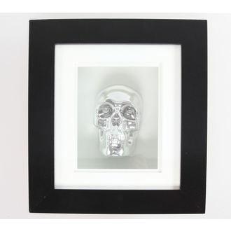 image Silver Skull In Frame