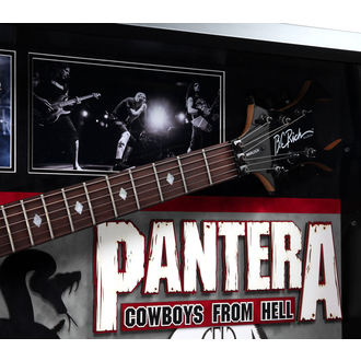 guitar with signature Pantera