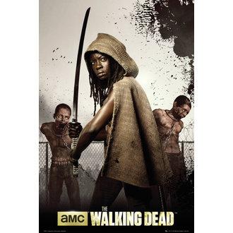 poster The Walking Dead - Dead Michonne - GB Posters - FP3073