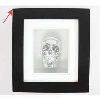 image Silver Skull In Frame - DAMAGED