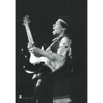 flag Jimi Hendrix - B. & W.Guitar - HFL0784