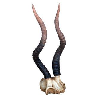 decoration Kudu Horns - D1194D5