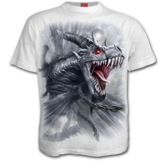 t-shirt men's - DRAGON'S CRY - SPIRAL, SPIRAL