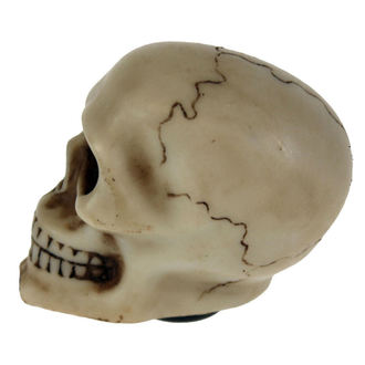 decoration (head gear lever) Skull Gear