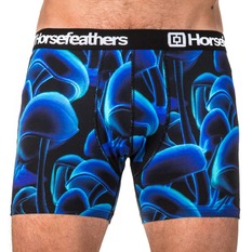 Men's Boxer Briefs HORSEFEATHERS - SIDNEY - Tyler, HORSEFEATHERS