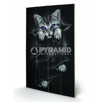 wooden image Spiral (Bright Eyes) - Pyramid Posters, SPIRAL