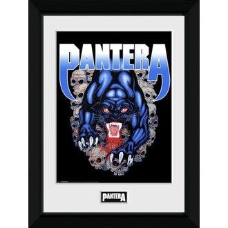Poster (framed) Pantera - GB posters, GB posters, Pantera