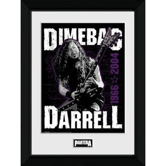 Poster (framed) Pantera - GB posters - PFC3125