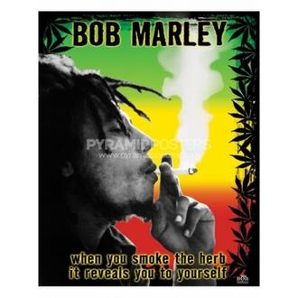 Poster - Bob Marley (Herb) - PP0978 - Pyramid Posters