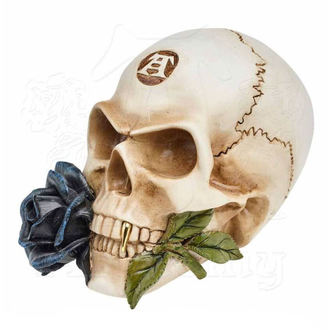 Decoration ALCHEMY GOTHIC - Alchemist Skull with Rose, ALCHEMY GOTHIC