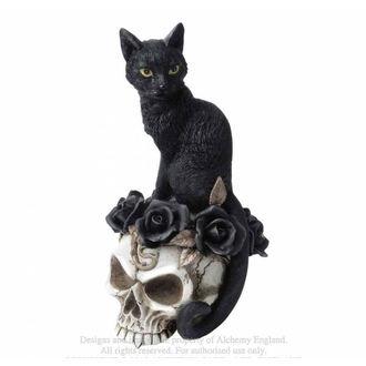 Decoration ALCHEMY GOTHIC - Black Cat & Skull, ALCHEMY GOTHIC
