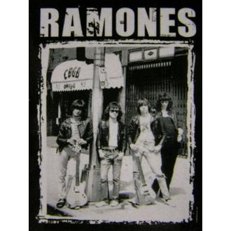 flag Ramones - CBGB Photo - HFL0768