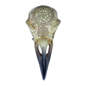 Decoration ALCHEMY GOTHIC - Omega Raven Skull, ALCHEMY GOTHIC